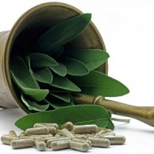 phytothérapie drainate