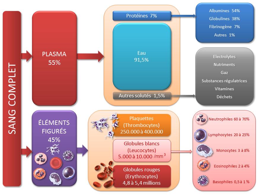 bilans biologiques et naturopathie