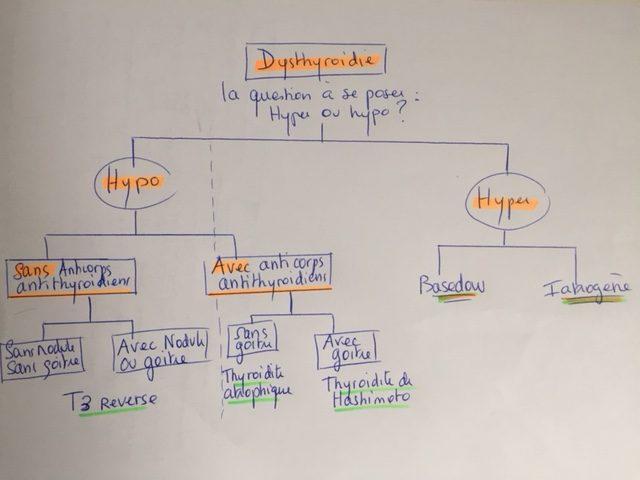 bilans biologiques et thyroide